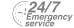 24/7 Emergency Service Pest Control in Gidea Park, Heath Park, RM2. Call Now! 020 8166 9746